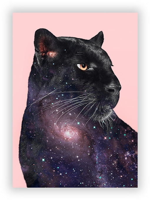 Galaxy Panther