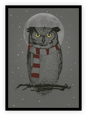 Winter Owl