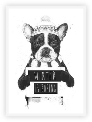Winter is Boring