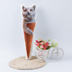 Custom Ice Cream Cone Shaped Pillow | photogiftsideas