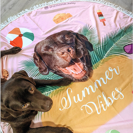 personalized pet photo beach towel