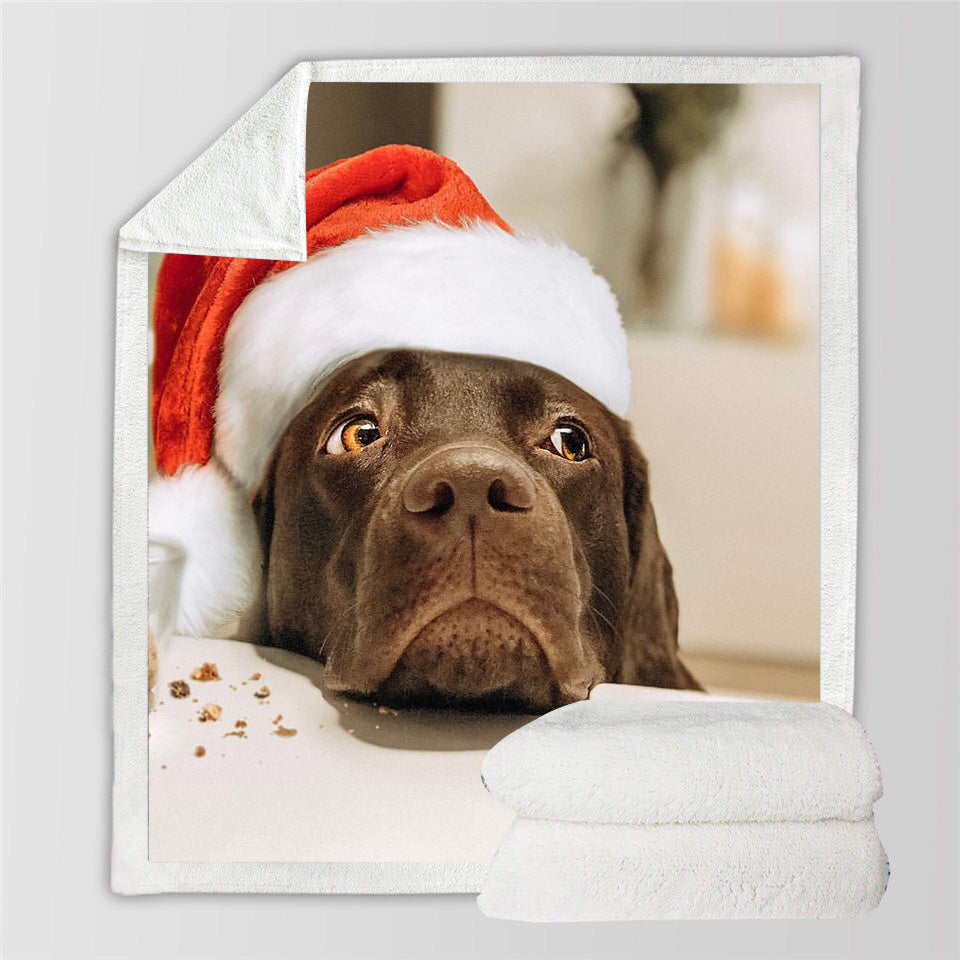 2019 Chirstmas photo gifts ideas- personalzied dog blanket