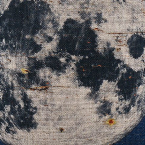Blue Moon Designer Cushion Cover