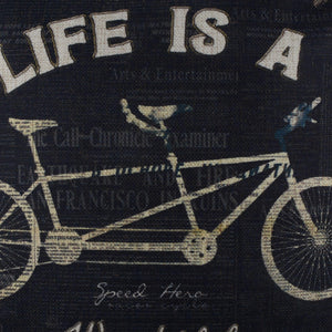Life is a wonderful ride pillow cover