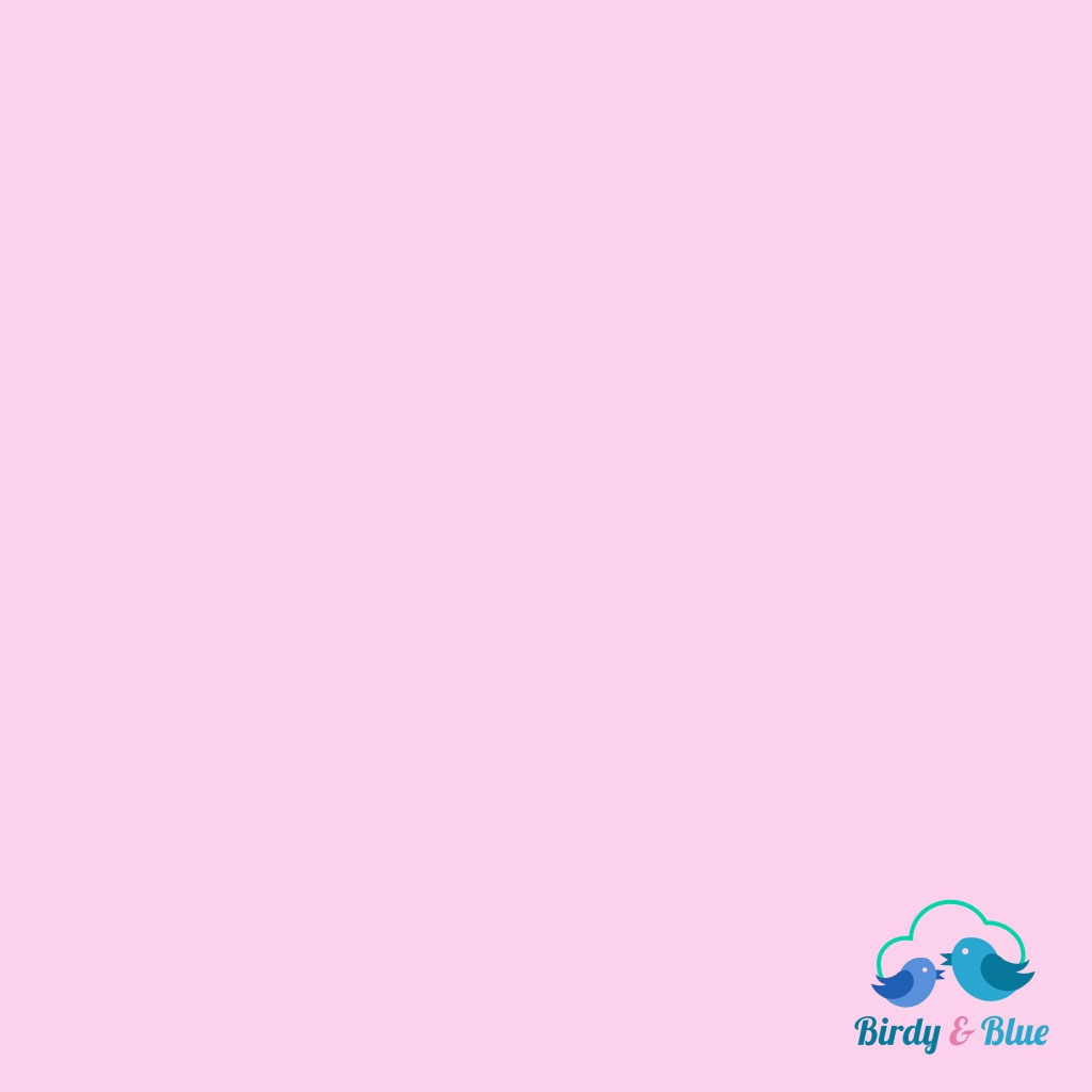 Baby Pink (Spectrum Collection) Premium Cotton Fabric