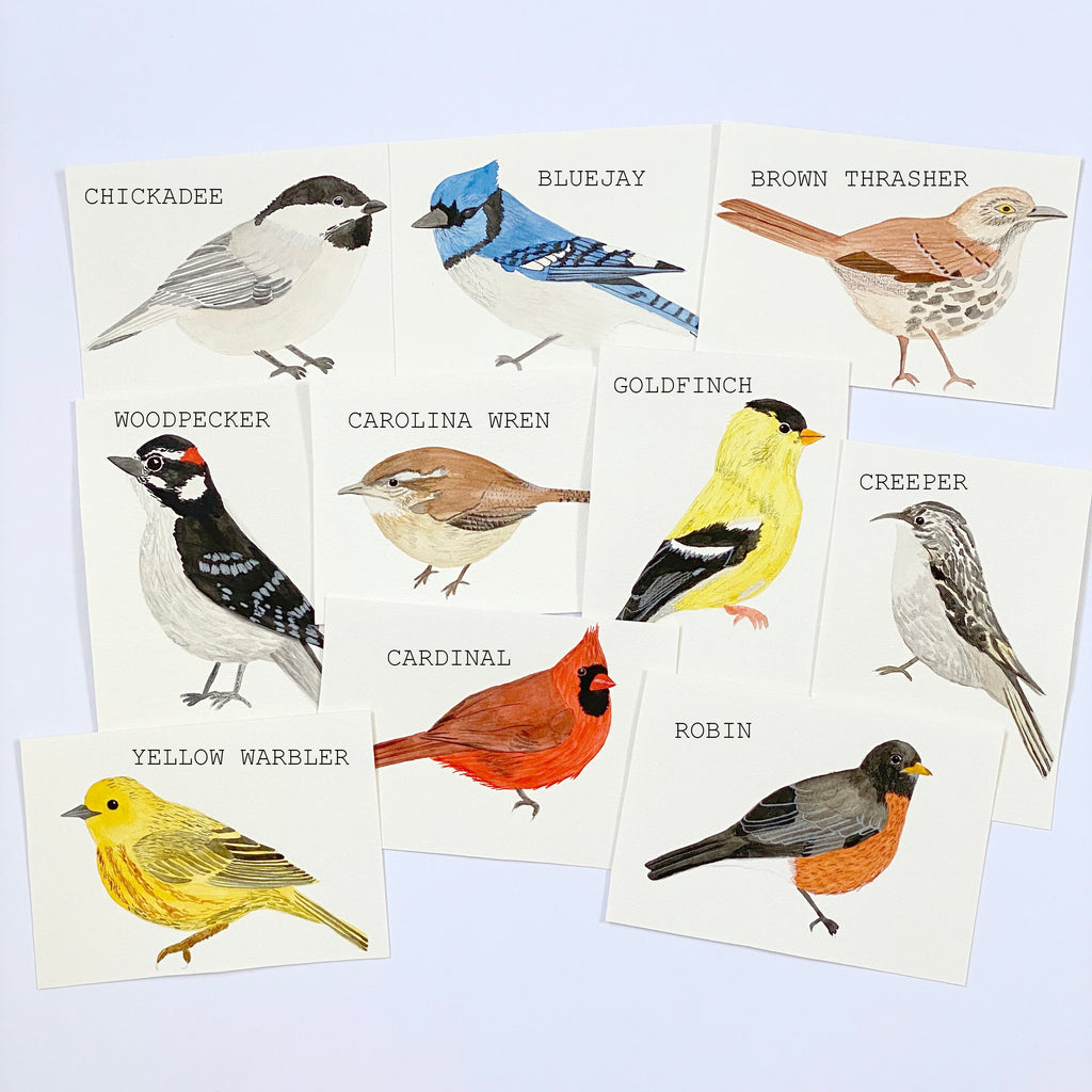 American Birds - Original 10x15cm Watercolour Paintings - By Sarah Frances - Sarah Frances