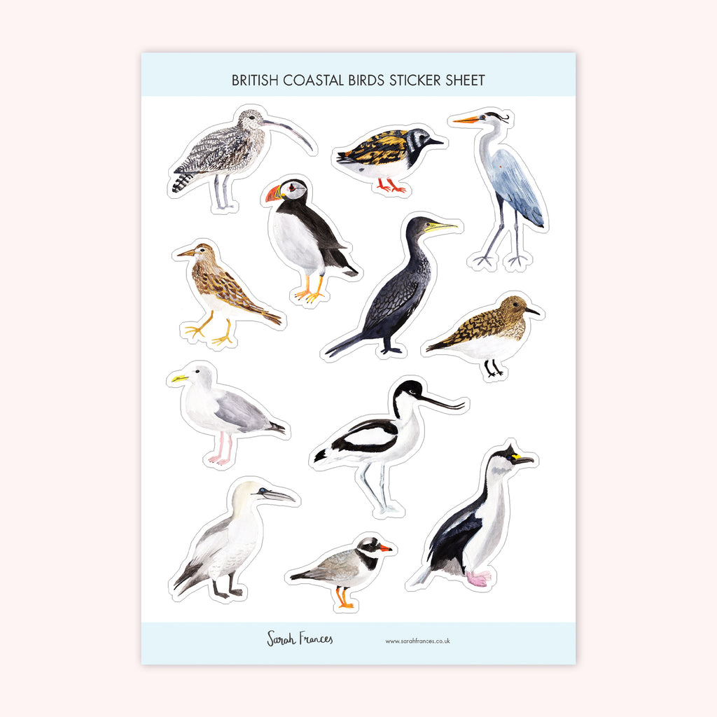 British Coastal Birds Stickers - Sarah Frances