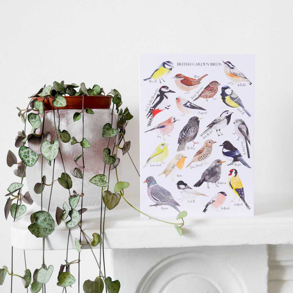 British Birds Greetings Card - Sarah Frances