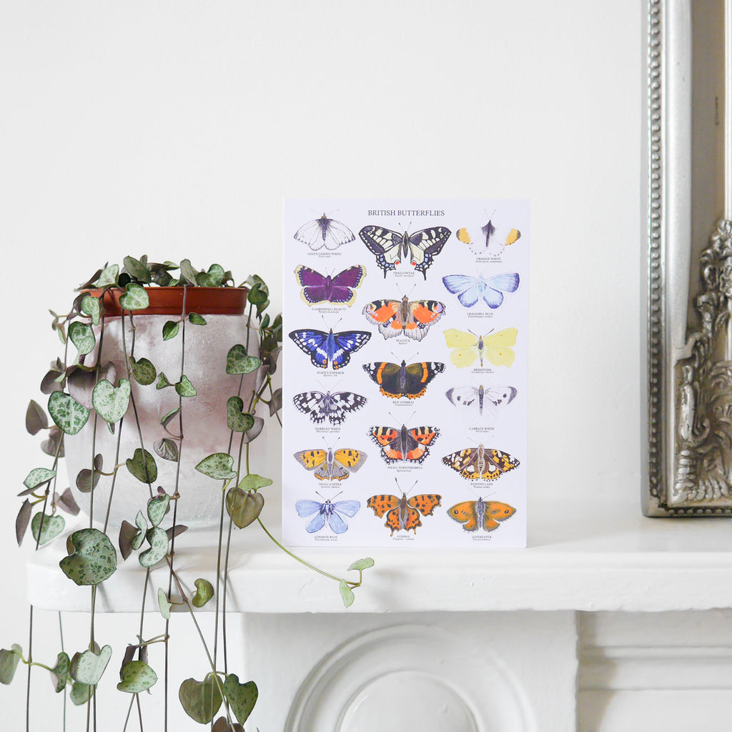 British Butterflies Greetings Card - Sarah Frances