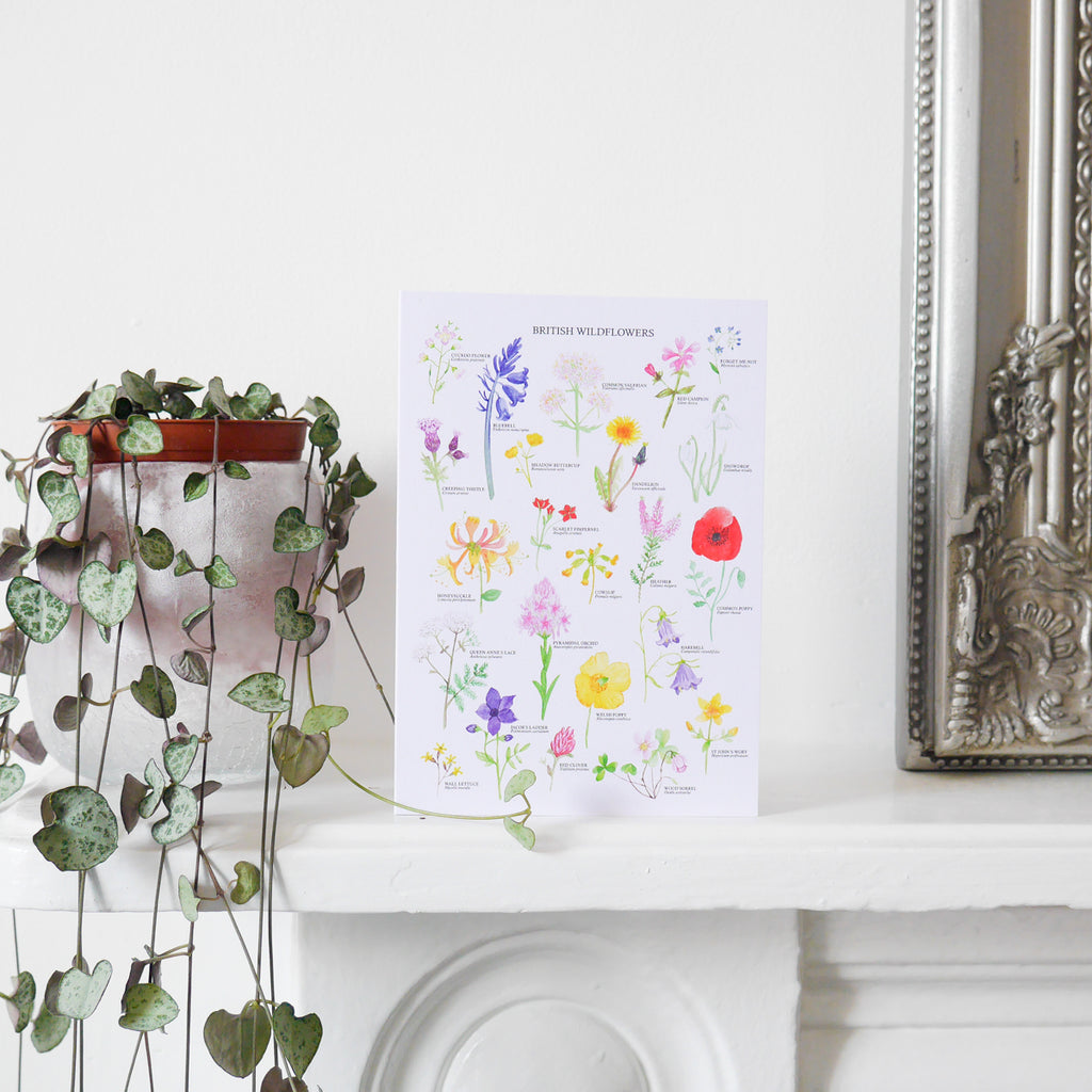 British Wildflowers Greetings Card - Sarah Frances