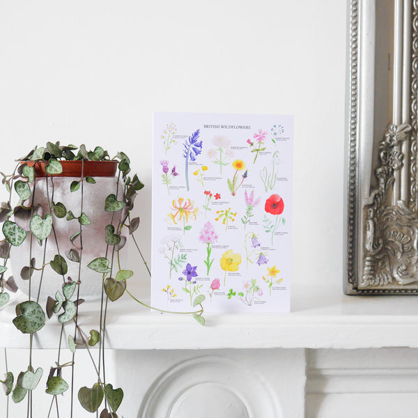 British Wildflowers Greetings Card