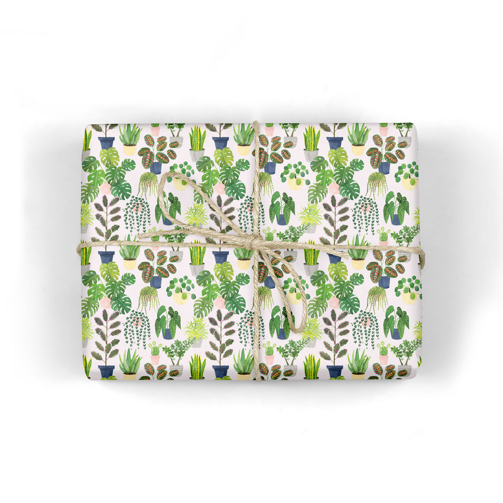 Indoor Plants Wrapping Paper - Sarah Frances
