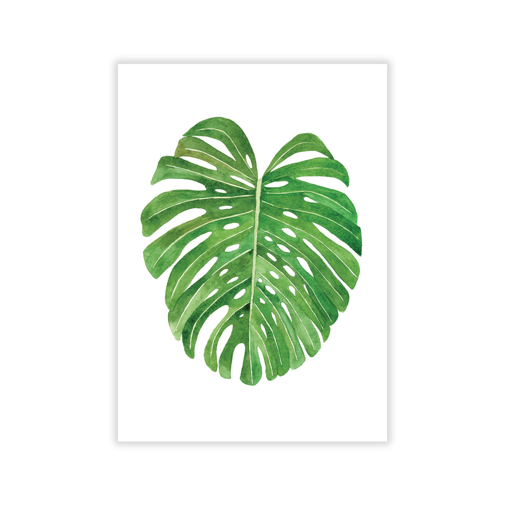 Monstera Leaf Art Print - Sarah Frances