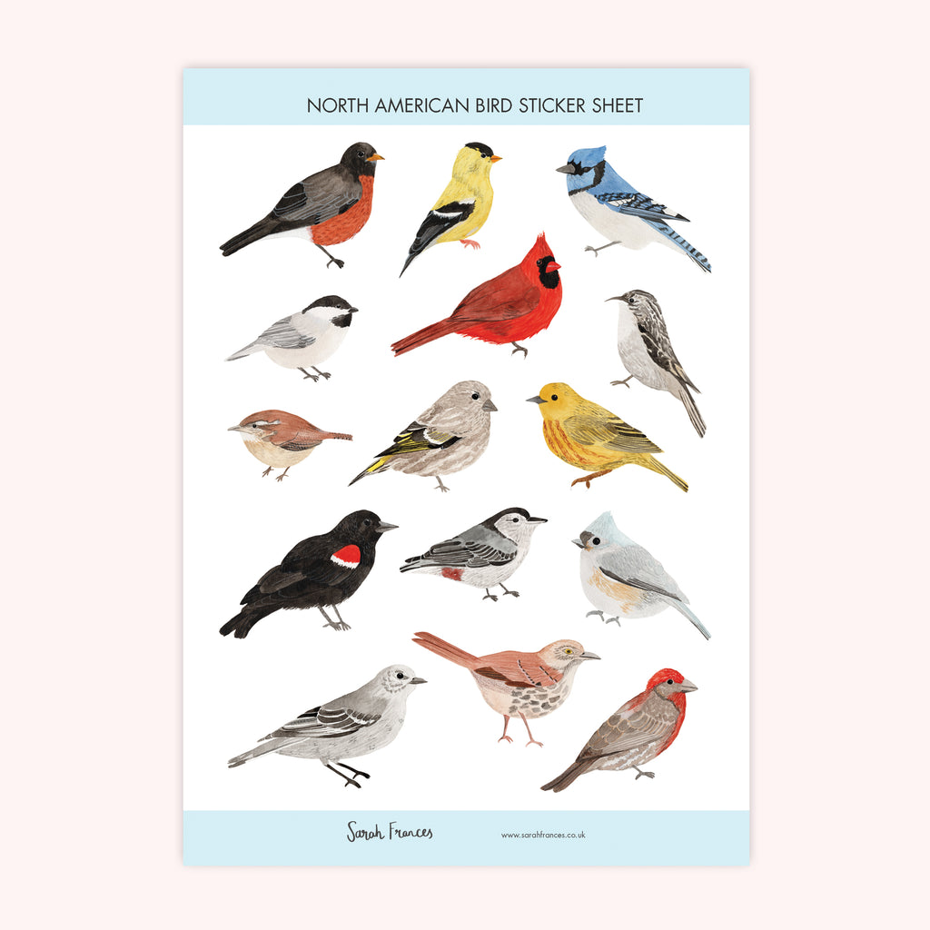 North American Bird Stickers - Sarah Frances