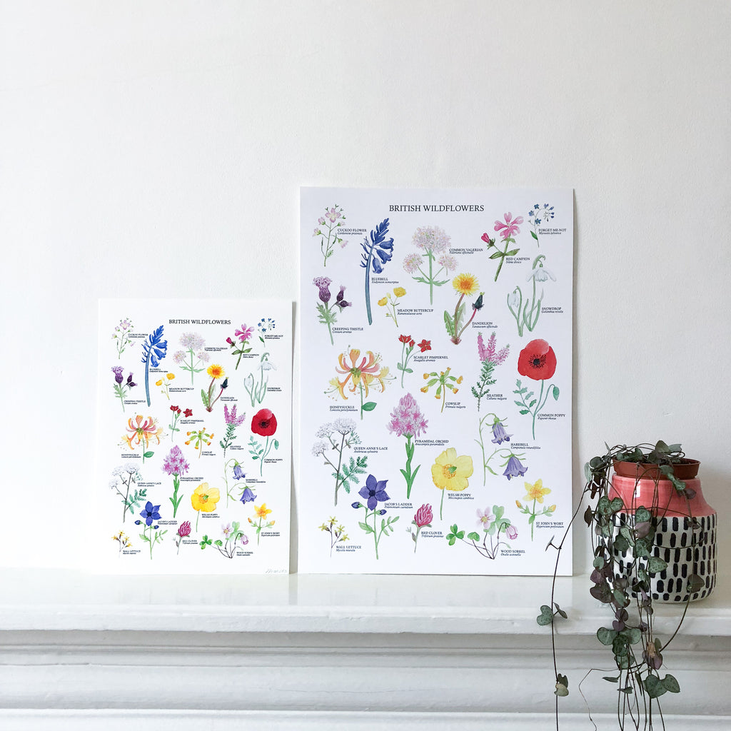 British Wildflowers Art Print - Sarah Frances