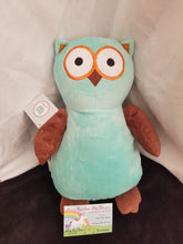 Hooty Lou the Blue/Brown Owl