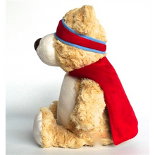 Super Courage Bear.