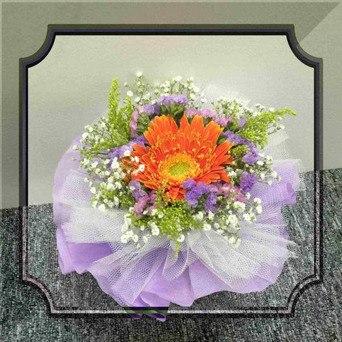 Single Gerbera Bouquet -  ZZR1310