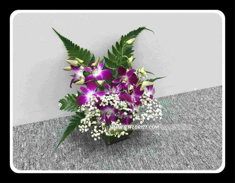 Orchid Small Arrangement - VAL4124
