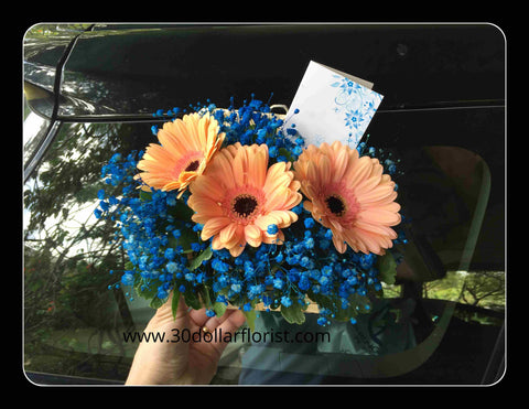 Gerbera Arrangement- ZZR1136