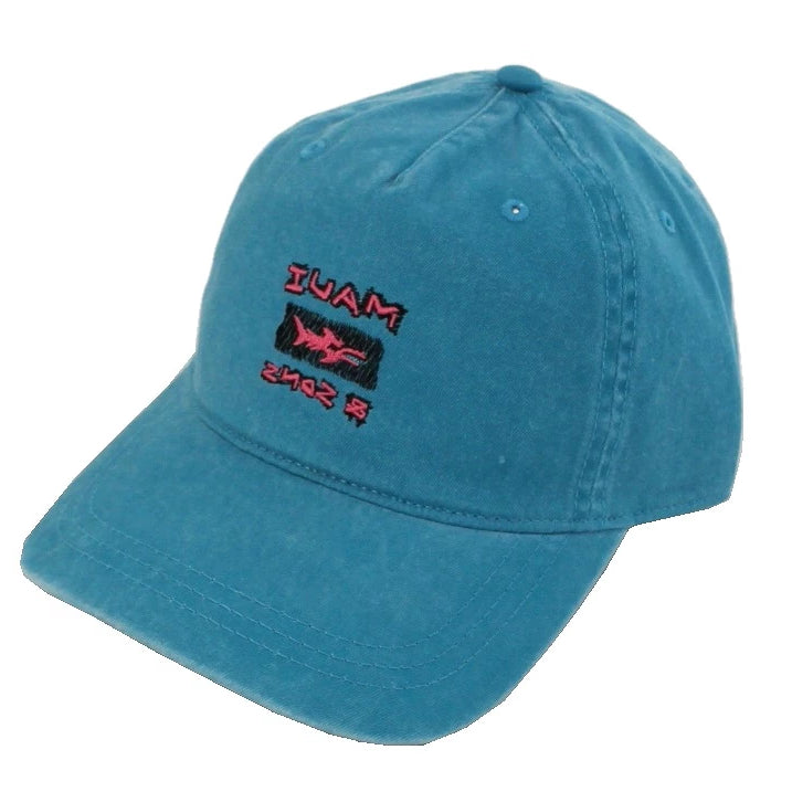 Surf Snow Dad Hat