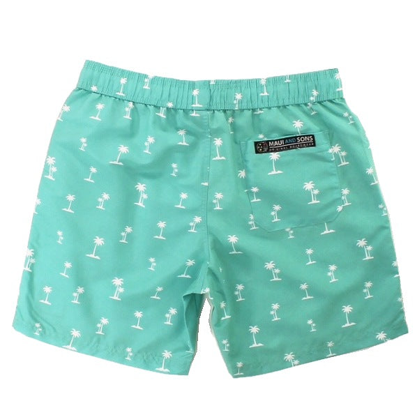 Palm Island Men's Pool Short