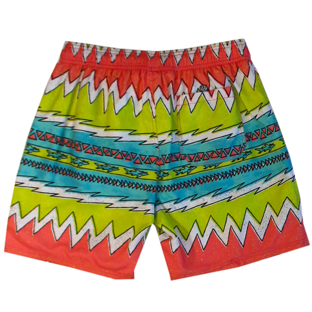 Let It Rip Men's Pool shorts