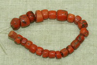 Impressive Strand of 24 Small Berber Red Coral Beads