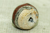 Ancient Roman Glass Bead, H