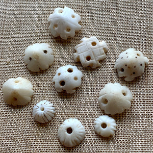 Small Carved Shells, Mali, Set of 10