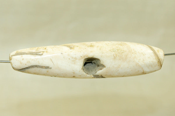 Large Tribal Conch Shell Bead from Nagaland
