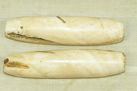 Pair of Large Conch Shell Beads from Nagaland