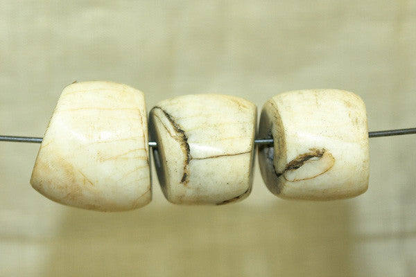 large, Chunky Tribal conch shell Bead from Nagaland