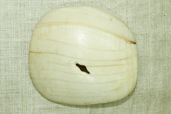 Tribal Conch Shell Pendant from Nagaland, medium