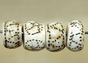 Set of Traditional Patterned Conch Shell Beads from Nagaland