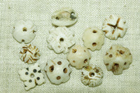 Tiny Hand-Carved Shell Cap Beads