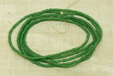 Antique Greasy dark Green 12º Seed Beads