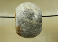Large Indonesian Fossil Bead; Lou Zeldis Studio