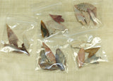 Ancient Indonesian Arrowheads Set of Five; Lou Zeldis Collection