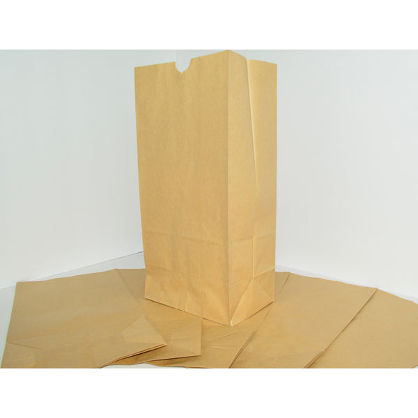 #25 Paper Lunch Bags - Brown