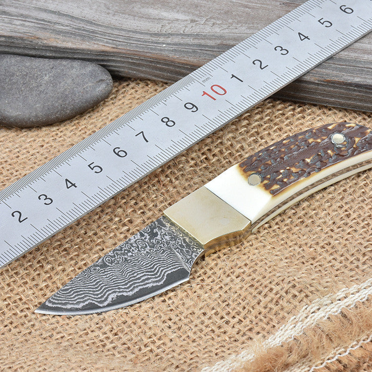 Damascus Steel Blade Outdoor Camping Knife with Leather Sheath