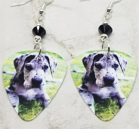 Great Dane Puppy Guitar Pick Earrings with Black Swarovski Crystals