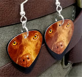 Chocolate Lab Guitar Pick Earrings