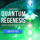 Light Body Activation - Quantum Regenesis