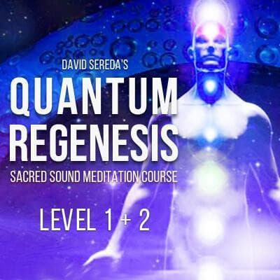 Meditation - Quantum Regenesis Meditation Course - Year 1 & 2 - Full Course Download