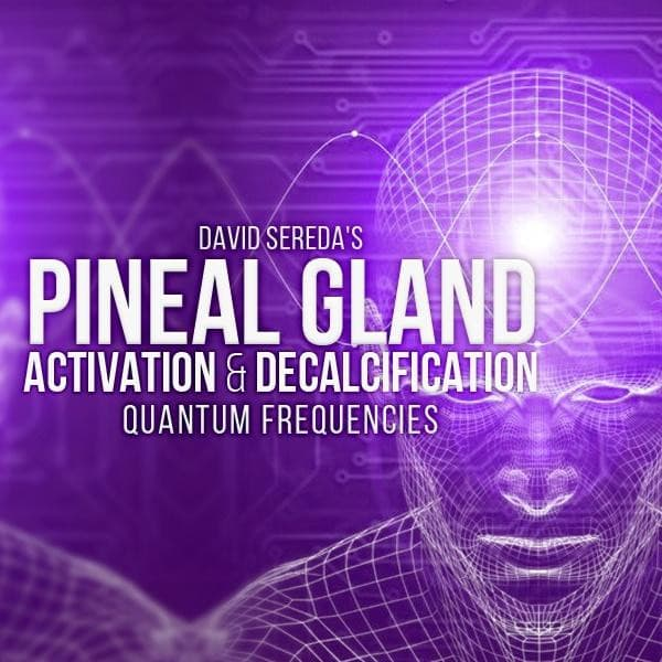 Quantum Frequencies - Pineal Gland Activation & Decalcification Frequency Package