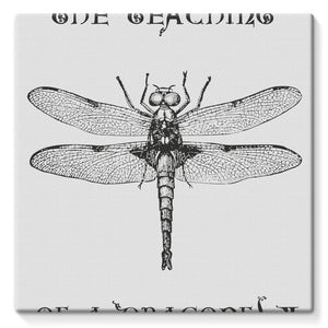 Dragonfly Stretched Eco-Canvas