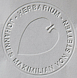 Herbarium, embossing leaf motif for preprinted print with an embossing plier