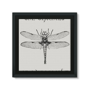 Dragonfly Framed Canvas