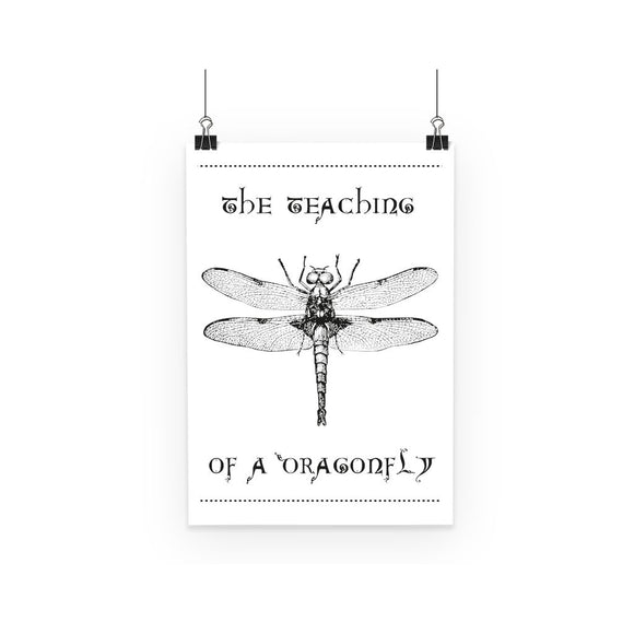 Dragonfly Poster Dragonfly